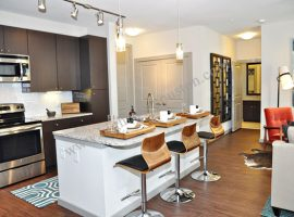 Astor-Tanglewood-Apartments-Houston-Galleria[7]