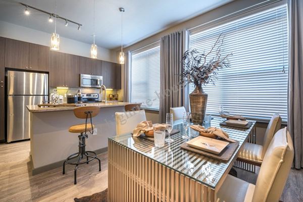 Modera Flats 1755 Wyndale Street 77030 Highrise Houston